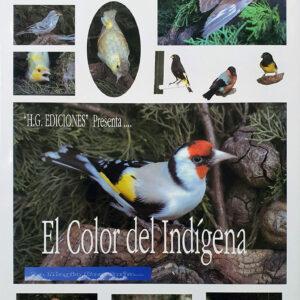 9788493180225 - El Color Del Indígena
