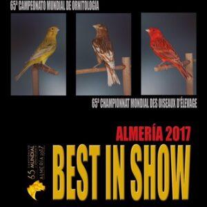 BEST IN SHOW ALMERÍA 2017