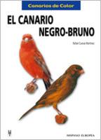 El canario negro-bruno (Canarios de color)