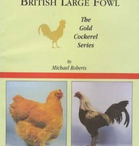British Large Fowl (9780947870119)