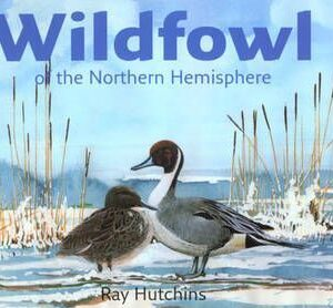 Wildfowl of the Northern Hemisphere (9780954307011)