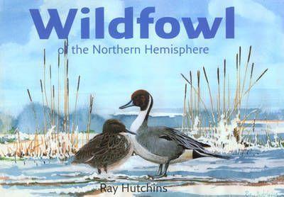 Wildfowl of the Northern Hemisphere (9780954307011)