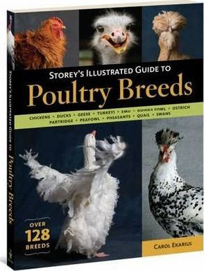 Storey's Illustrated Guide to Poultry Breeds (9781580176675)