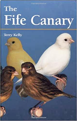 The Fife Canary (9781852791346)