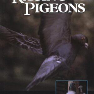 Racing Pigeons (9781861262325)
