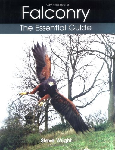 Falconry : The Essential Guide (9781861268631)