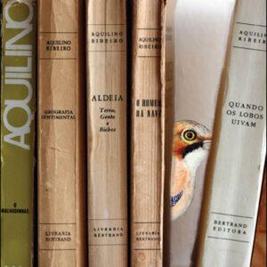 Guia das Aves de Aquilino Ribeiro (9789898421098)