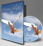 Freedom of Flight Documentary DVD