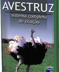 AVESTRUZ - SISTEMA COMPLETO DE CRIAÇÃO