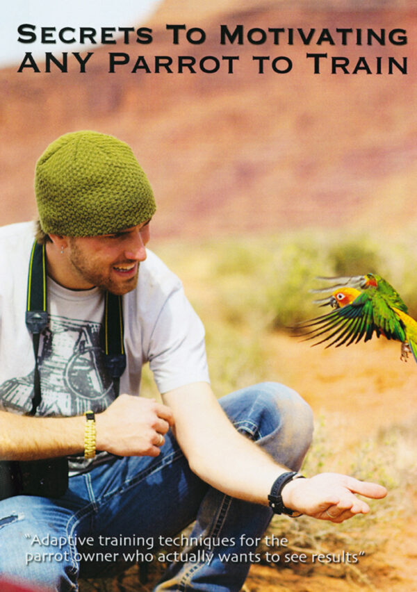 Secrets to Motivating any Parrot do Train Dave and Jamieleigh Womach